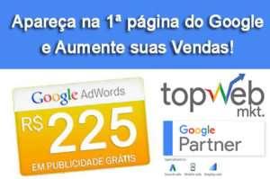 Top Web Mkt - Marketing Digital